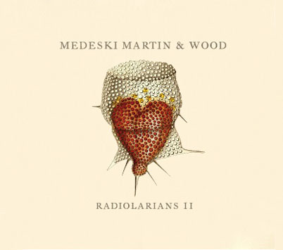 medeski martin and wood radiolarians 2