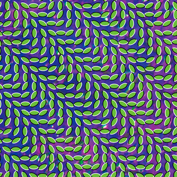 Animal Collective Merriweather post pavillion
