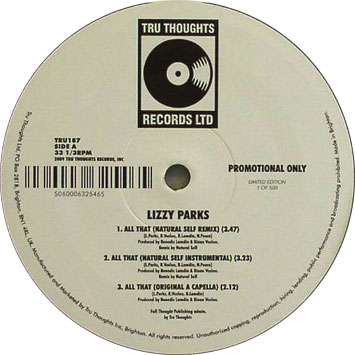 Lizzy Parks All That